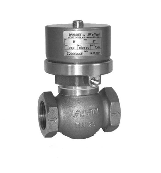 Pneumatically Operated Globe Valves